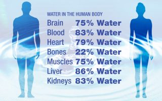 water-in-the-human-body-1-1080x675